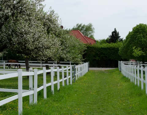 Der Fohlenhof